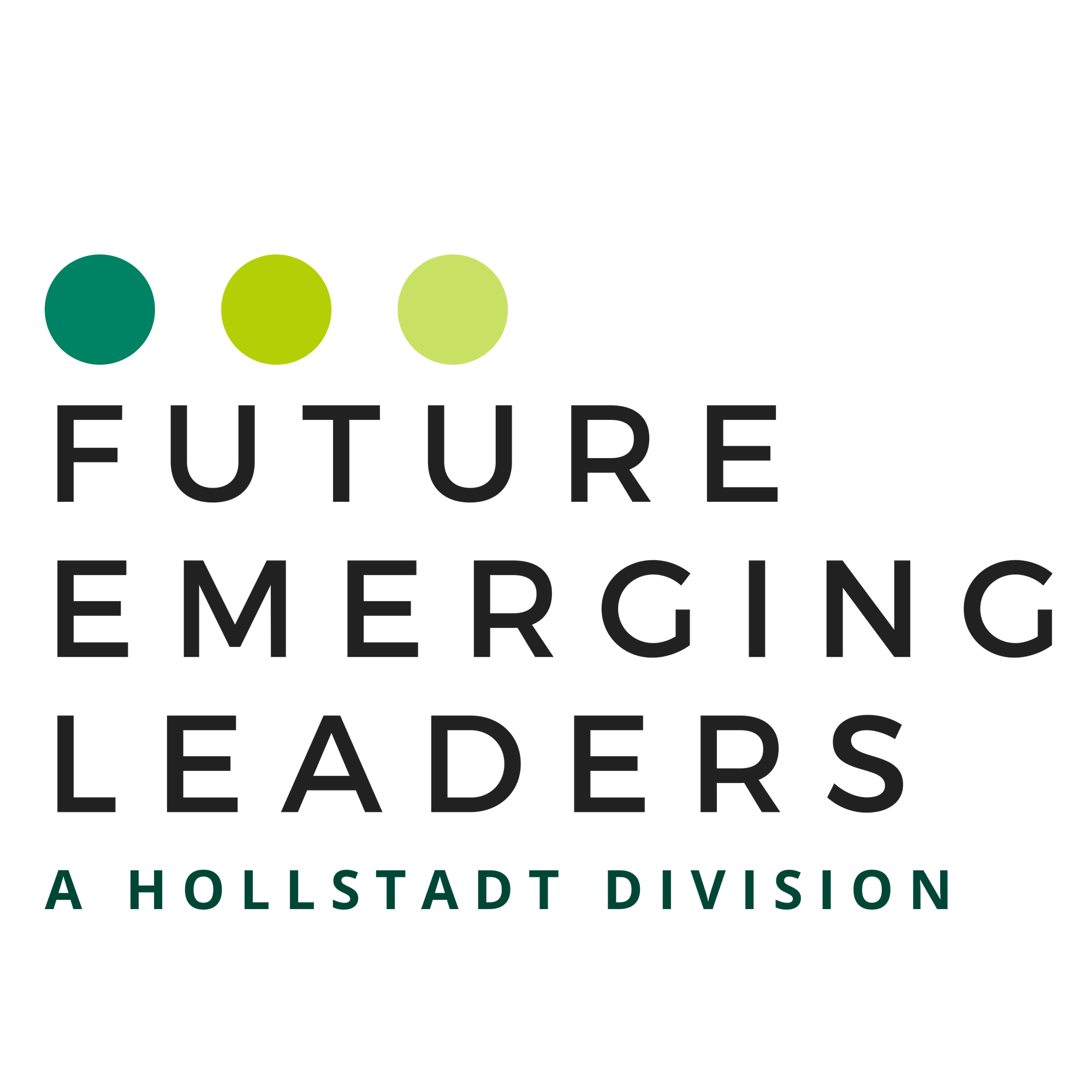 Future Emerging Leaders